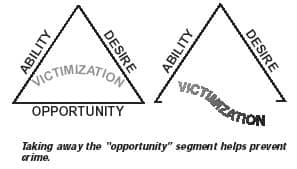 the theft triangle